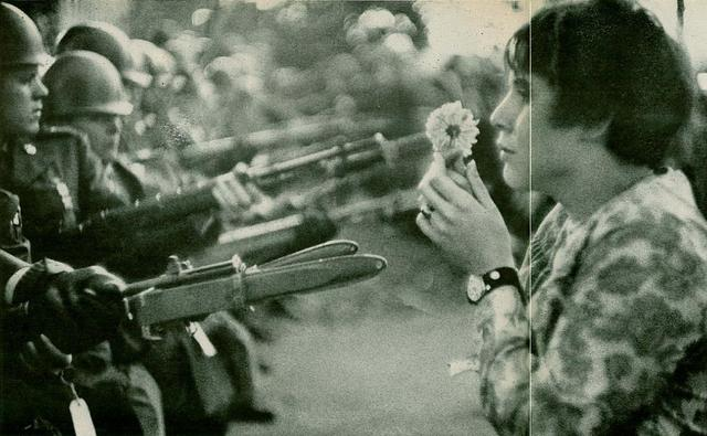 Girl Holding Flower In Front of Bayonets